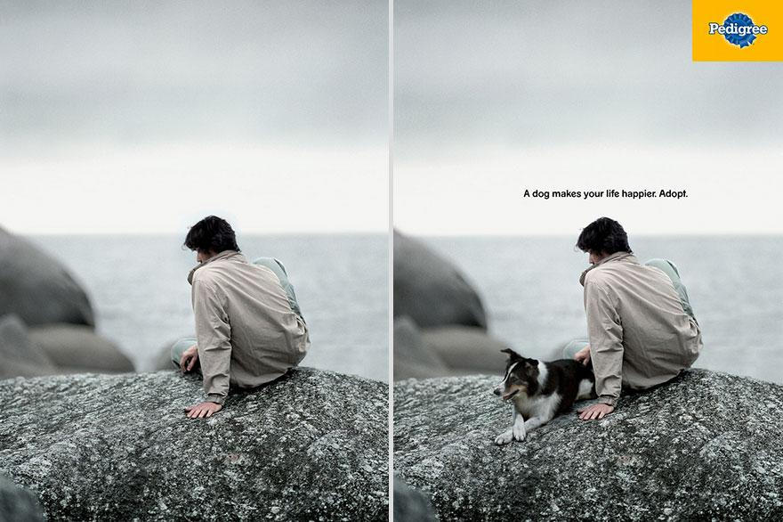 creative-print-ads-dog