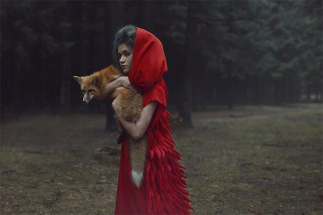 human-and-fox.jpg