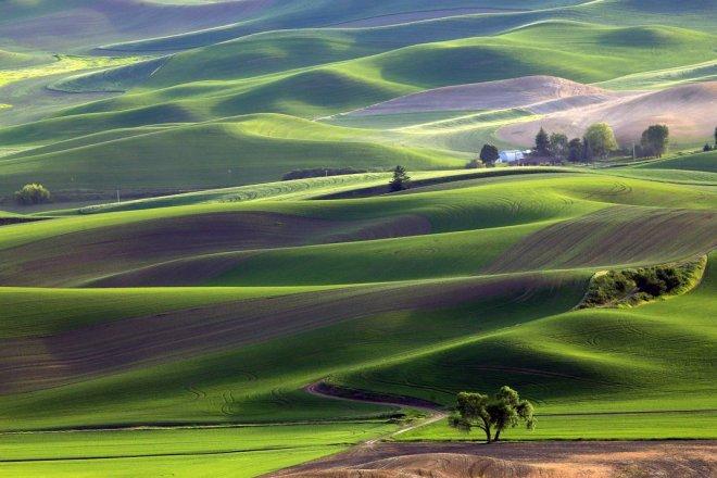 green-valleys